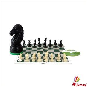 شطرنج ترنج اسب مینی